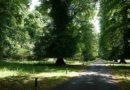 Calke Abbey and Park