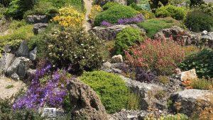 The Alpine Garden