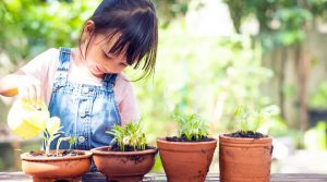 Fun Gardening with an Isolated Child
